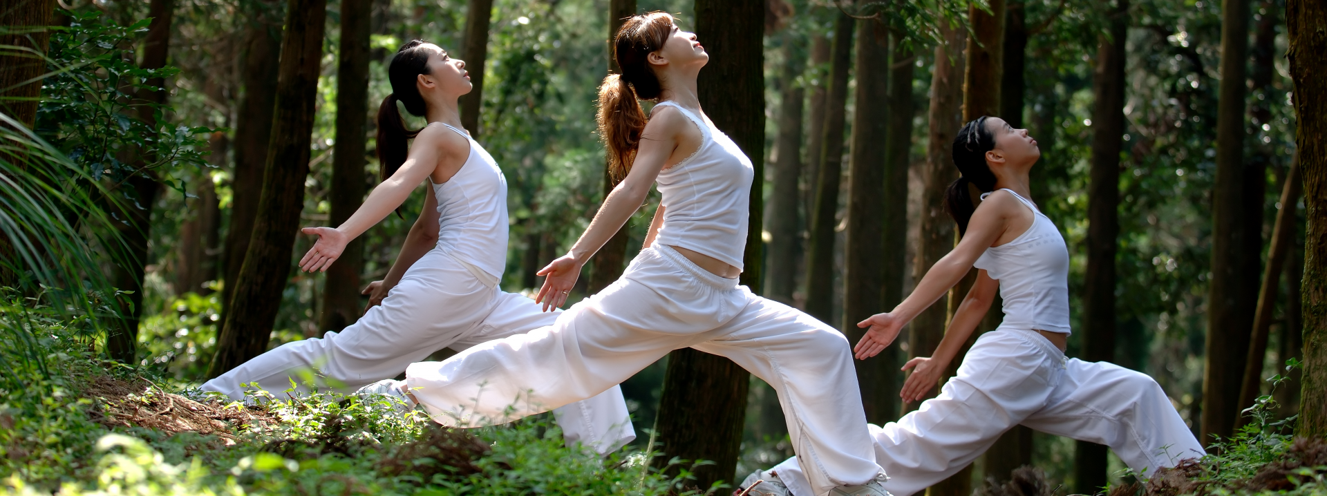 Thee Asian women in a forest doing dressed in white doing yoga